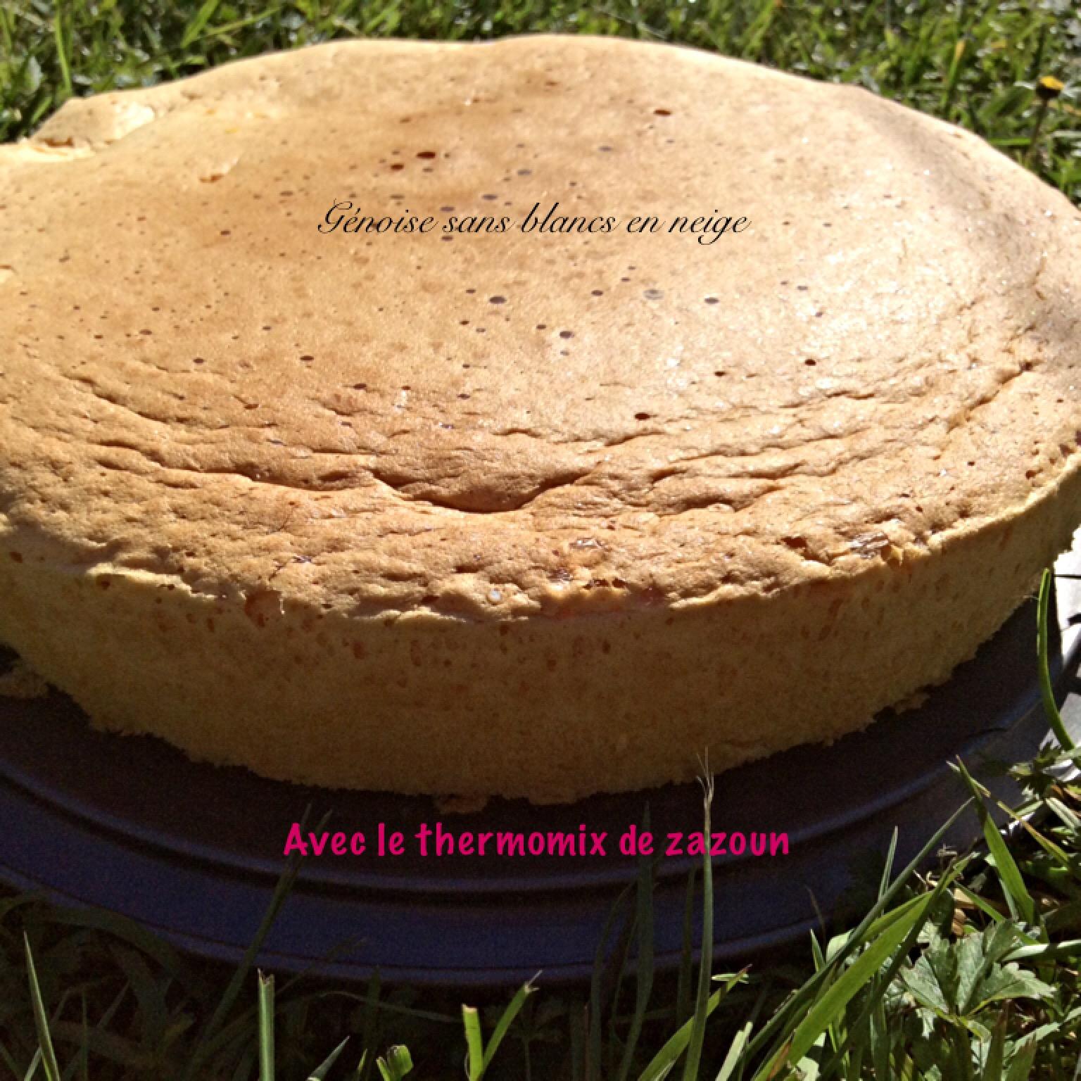 Gateau sucre courgette thermomix